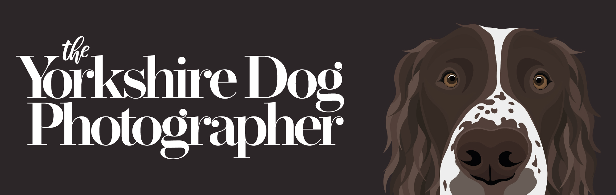 The Yorkshire Dog Photographer Image