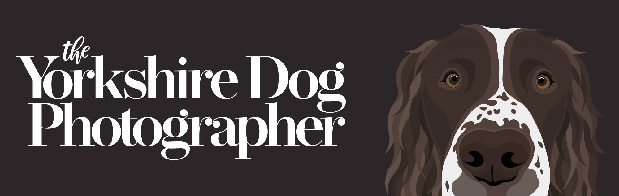 The Yorkshire Dog Photographer Image